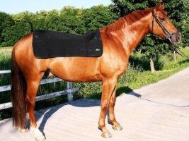 Back On Track Horse Back Warmer