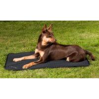 Back On Track Mattress Allround Dog Bed