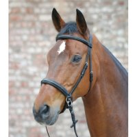 Star Bitless Bridle – Scawbrig Style Bitless Bridle And Reins