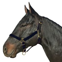 Best Friend Safety Breakaway Halter / Headcollar