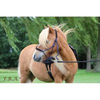 Capal Rope Halter With Leather Nose / Head Protection