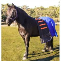 Cool Heat Horse Rug
