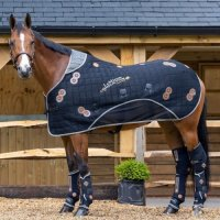 Lemieux Conductive Magno Therapy Rug