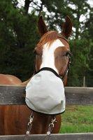 Nag Horse Ranch California Trail Rider With Poll Strap