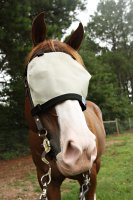 Nag Horse Ranch Attach to Bridle Eye Only Shade