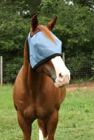 Nag Horse Ranch Eye Protection Shade
