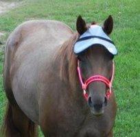 Nags Horse Ranch Sun Visor