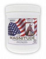 Magnitude Powder