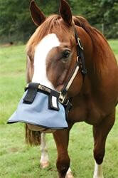 Nags Horse Ranch Attach to Halter Nose Shade