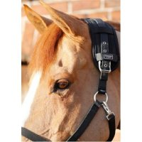 Premier Equine Magnetic Horse Poll Band