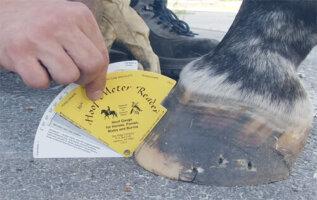 Horse Hoof Meter Reader By Jamie Jackson