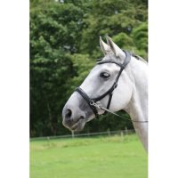 Rebecca Bling Side Pull Bitless Bridle And Reins