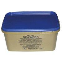 Gold Label Seaweed For Horses – 2kg